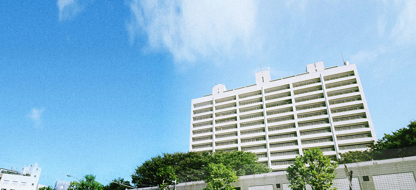 Hiroo Towers Bg